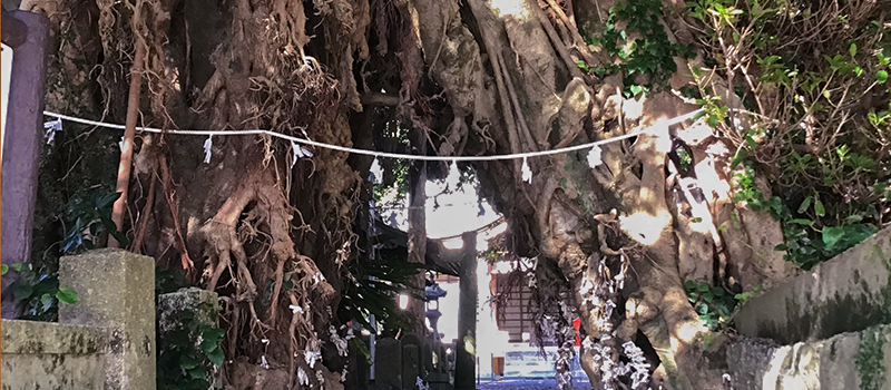 五島海のシルクロード芸術祭2020画像